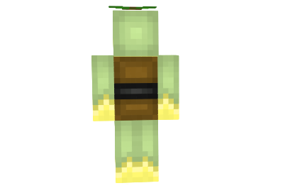 http://img2.azminecraft.info/Skins/Turtwig-skin-1.png